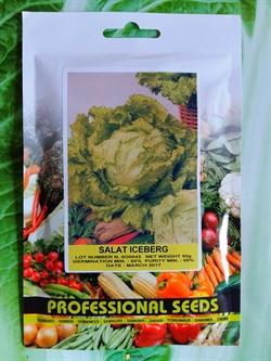 Семена салата Айсберг 50 г - фото 6911