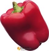 Семена перца Квадрато Асти Ред 10 г