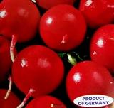 Семена редиса Рубин 250 г (Коуел)