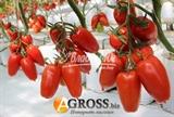 Семена томата Айдар F1 250 шт