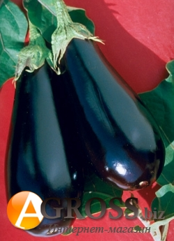 Семена баклажана Эпик F1 - фото 3672