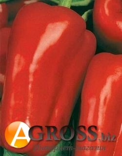 Семена перца Антей 1000 шт - фото 3782