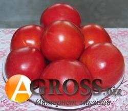 Семена томата Афен F1 - фото 4108
