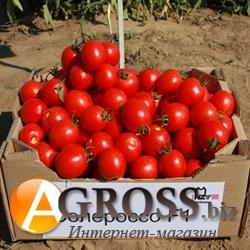 Семена томата Солероссо F1 - фото 5546