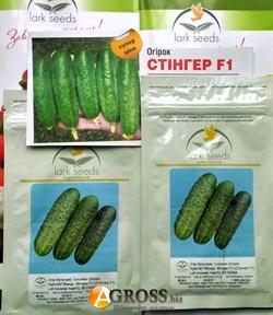 Семена огурца Стингер F1 - фото 5990