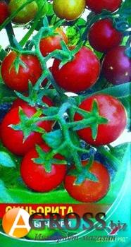 Семена томата Синьорита (черри) 1 г - фото 6047