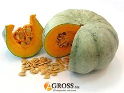 Семена тыквы кормовой Сероволжская (Волжская серая-92)1 кг (весовая) - фото 6245