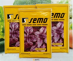 Семена базилика Фиолетовый Опал (SEMO) - фото 6248