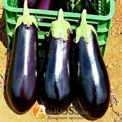 Семена баклажана Надир - фото 6770
