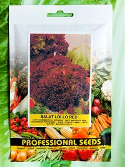 Семена салата Лолло Ред 50 г - фото 6909