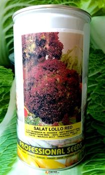 Семена салата Лолло Ред 500 г - фото 6912