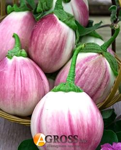 Семена баклажана Бьянка Сфумата ди Роса 10 г - фото 7733
