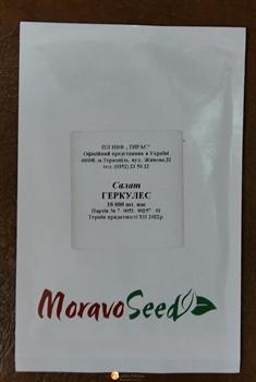 Семена салата Геркулес  - фото 8022