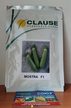 Семена кабачка Мостра F1 - фото 8132