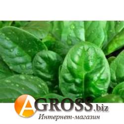 Семена шпината Рем F1 25 000 шт - фото 8176