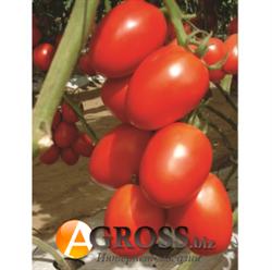Семена томата Гранадеро F1 250 шт - фото 8216