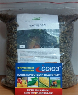 Семена кормовой свеклы Рекорд Поли - фото 8235