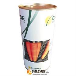 Семена моркови Шантане КЛ - фото 8558
