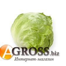 Семена салата Платинас (драже) 1000 шт - фото 8628