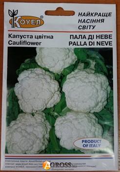 Семена капусты цветной Пала Ди Неве (10г) - фото 8758
