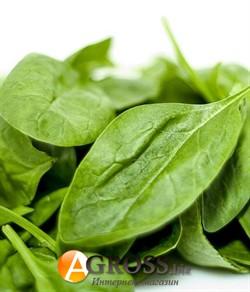 Семена шпината Эль Форте  (100 000 шт) - фото 8823