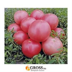 Семена томат Пинк Свитнес F1 500 шт - фото 8916
