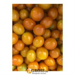 Семена томата Оранж Олив F1 - фото 8923