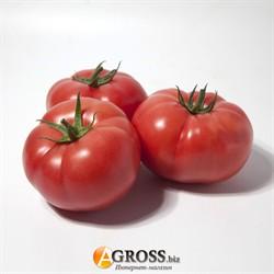 Семена томата KS 1157 F1 - фото 9139