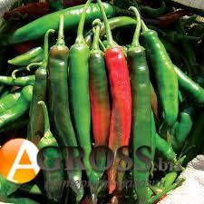 Семена перца Бибо (Импала) F1 - фото 9355