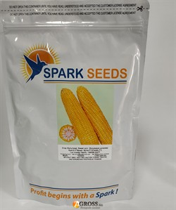 Семена кукурузы Страйк F1 - фото 9608