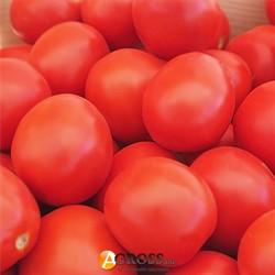 Семена томата Баста F1 - фото 9752