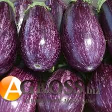 Семена томата Лейре F1 - фото 9939