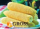 Семена кукурузы Спирит F1 500 г