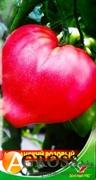 Cемена томата Абаканский розовый 1 г