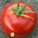 Семена томата Хиларио F1 250 шт