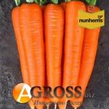 Семена моркови Бриллианс F1 (калибр 1,6 - 1,8) 100 000 шт.