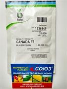 Семена моркови Канада F1 (калибр 1,8-2,0) 25 000шт