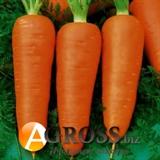 Семена моркови Ред Кор 500 г