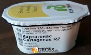 Семена салата Картагенас (драже) 1000 шт