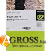 Семена томата Белфорт F1 (500 шт)