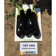 Семена баклажана HMC 1404 F1 (Казимир F1) 1000 шт