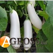 Семена баклажана Аретуза F1 (белый) 100 шт