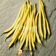 Семена спаржевой фасоли Фруидор