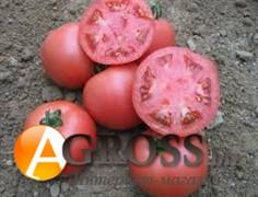 Семена томата VP - 2 F1 1000 шт