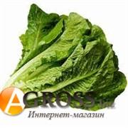 Семена салата Максимус (драже)