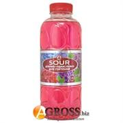 Rost Sour  для гортензий 1л