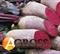 Семена свеклы Ломако (калиб.3,5-4,25) 25 000 шт - фото 3850