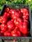 Семена перца Марек  (Карисма) F1 1000 шт - фото 6643