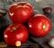 Семена томата Белла Росса F1 1000 шт - фото 6713