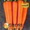 Семена моркови Бриллианс F1 (калибр 1,6 - 1,8) 100 000 шт. - фото 8033